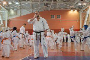 Студенты Сеченовки заняли призовые места в турнире по ашихара-карате. Фото: архив, «Вечерняя Москва»