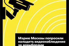Представители Общественной палаты попросили мэрию установить камеры видеонаблюдения на УИК на довыборах