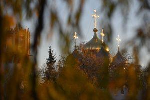 Представители библиотеки имени Аркадия Гайдара пригласили горожан на прогулку. Фото: Александр Кожохин, «Вечерняя Москва»