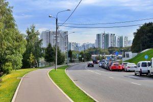 Образовательную прогулку организуют сотрудники библиотеки №6. Фото: Анна Быкова