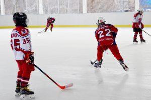 Детский турнир по хоккею с мячом завершился в «Лужниках». Фото: Анна Быкова