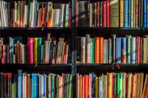 Историческую конференцию проведут в библиотеке имени Аркадия Гайдара. Фото: pixabay.com